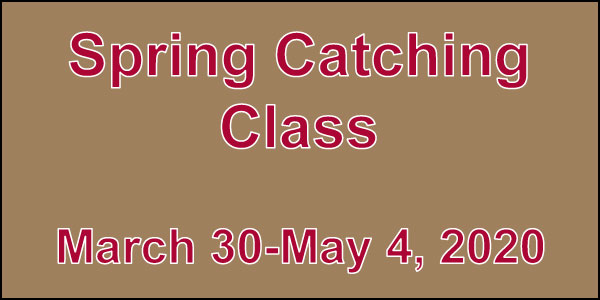 Spring-Catching-Class